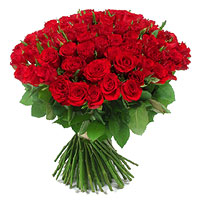 /photos/produits/bouquet-101-roses-rouge-200.jpg